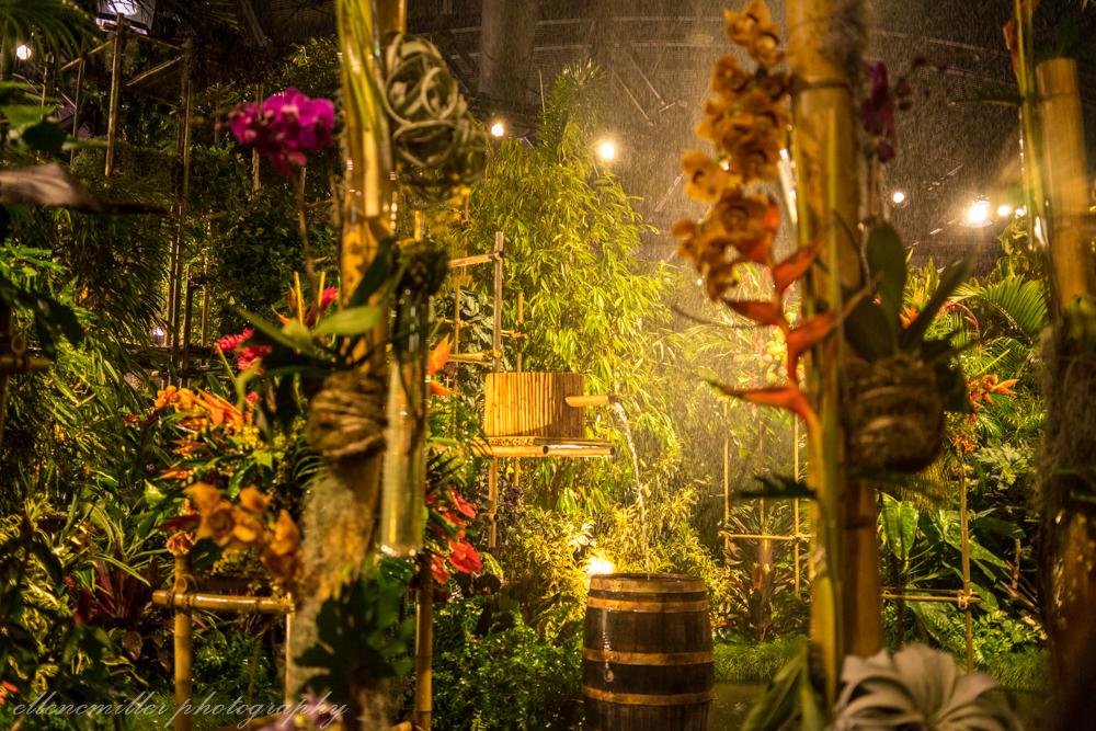 Phila Flower Show.jpg