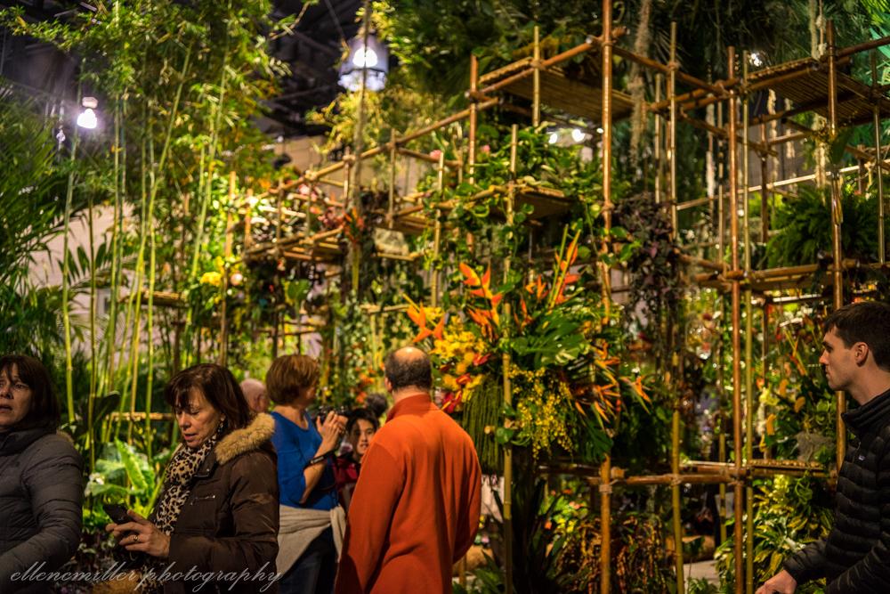 Phila Flower Show-4.jpg