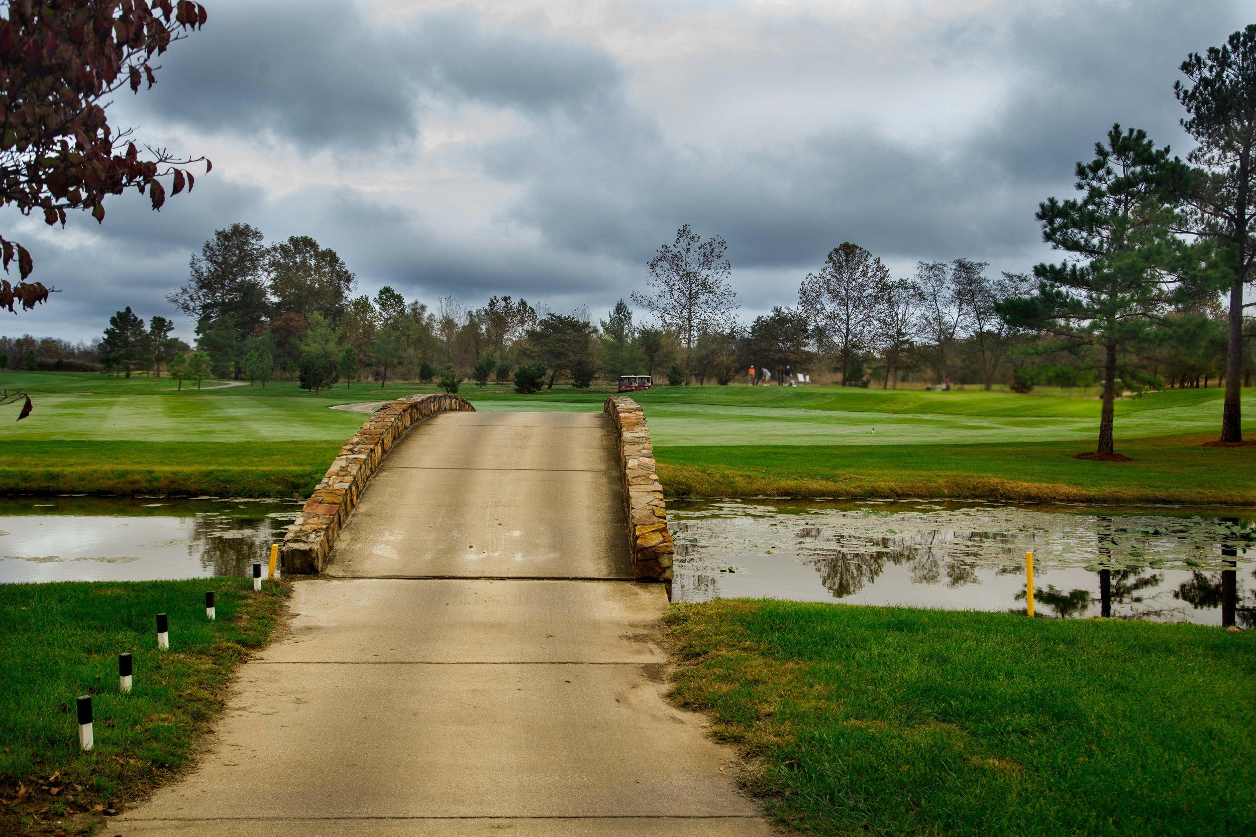 golftournie2017-152.jpg