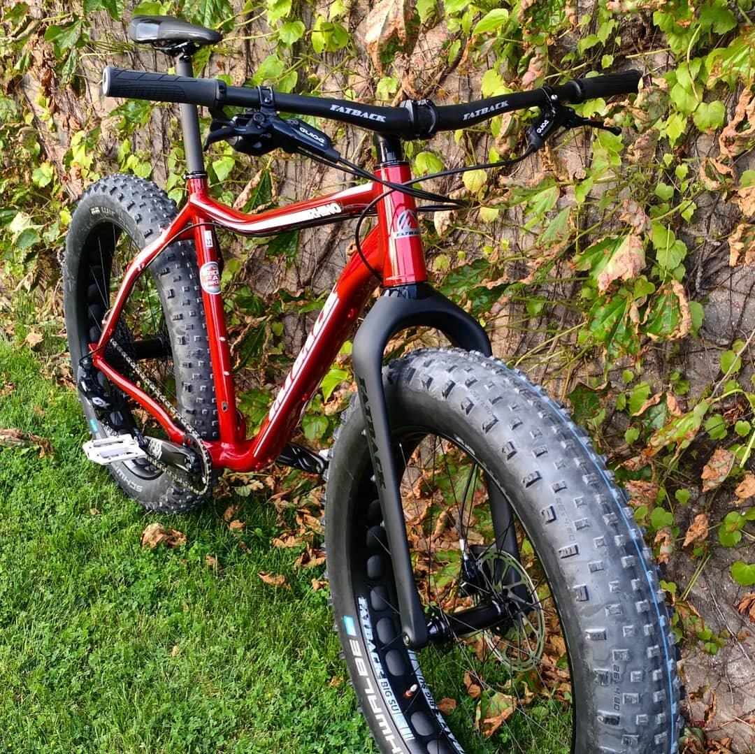 Fatback Rhino FLT - Ridefatbikes.ca - carbon fork 1.jpg