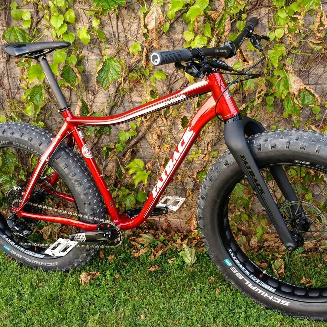 Fatback Rhino FLT - Ridefatbikes.ca - carbon fork 2.jpg