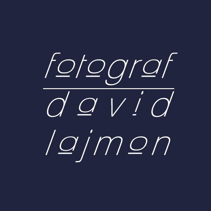 www.lajmon.info
