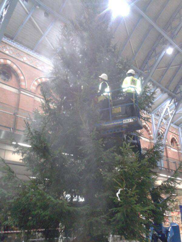 40ft Christmas Tree at St Pancras International Station flame proofed 2.jpg