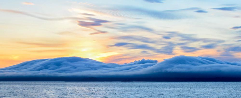 Alaska Photography Workshop Marisa Marulli fog.jpeg