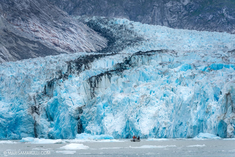 333-2_Photo By Marisa Marulli_Tongass National Forest_Alaska.jpg