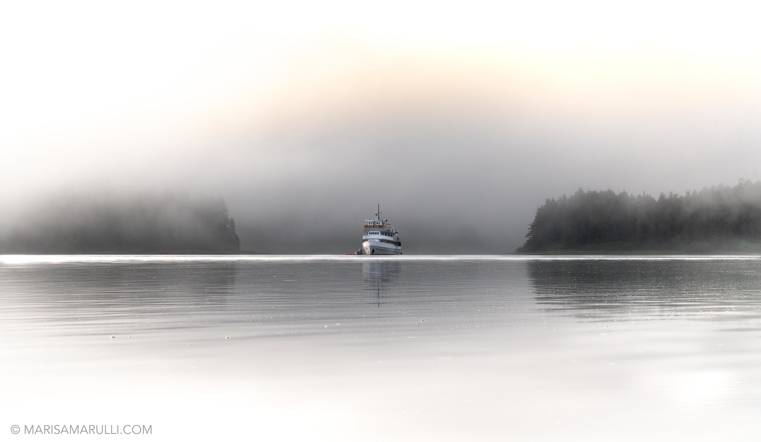 183-2_Photo By Marisa Marulli_Tongass National Forest_Alaska.jpg