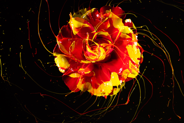 Image I captured in our latest local workshop: High Speed Photography