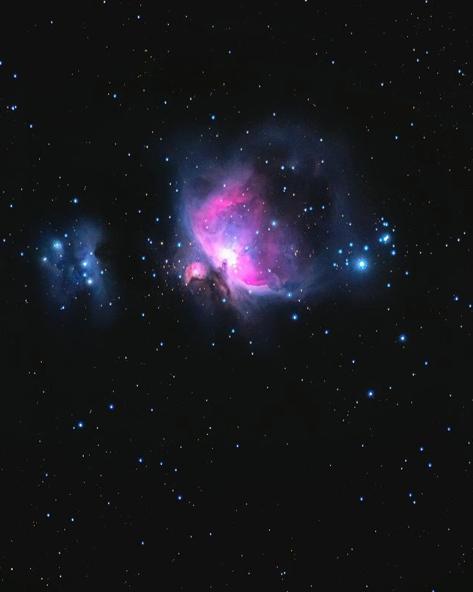 Orion Nebula © Marisa Marulli