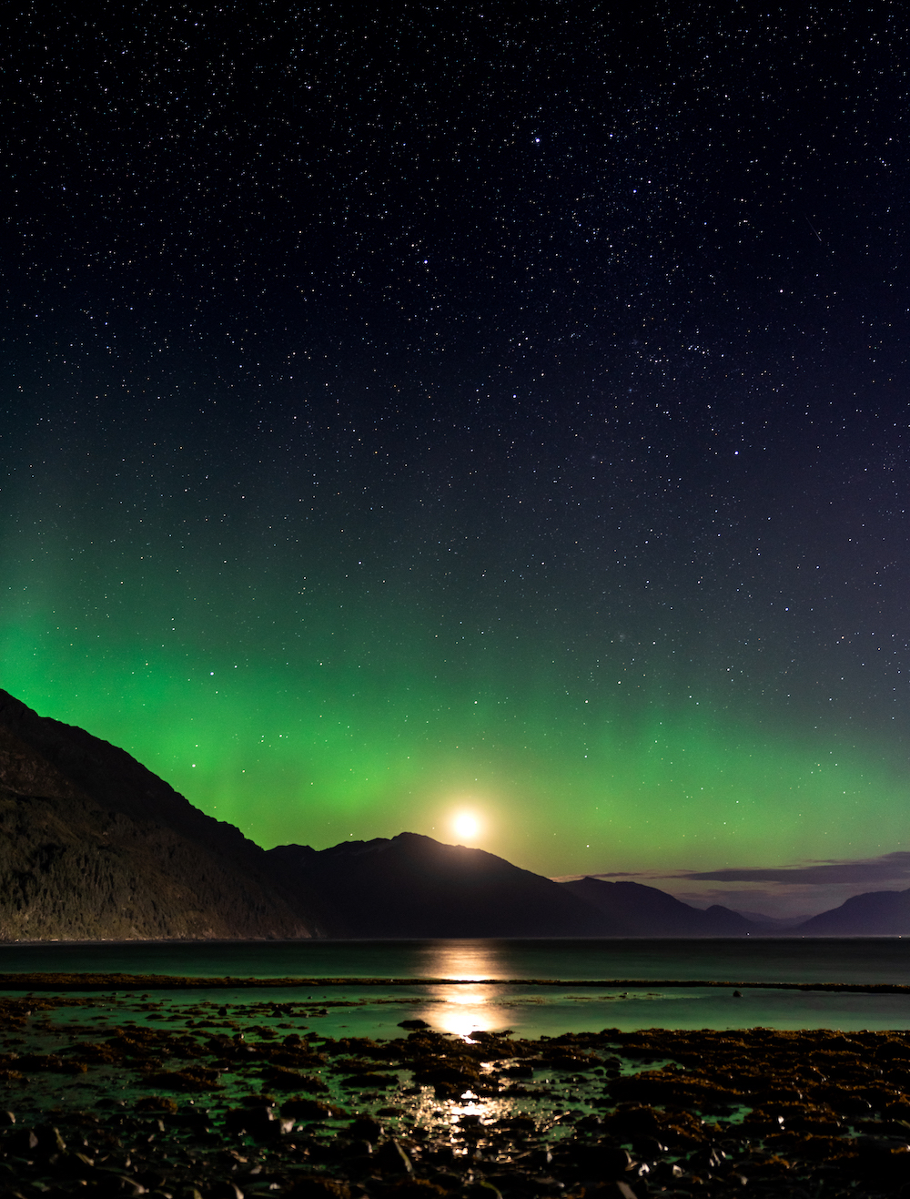 """The Aurora, or """"Northern Lights,"""" captured in Alaska during our recently offered photography expedition!"""
