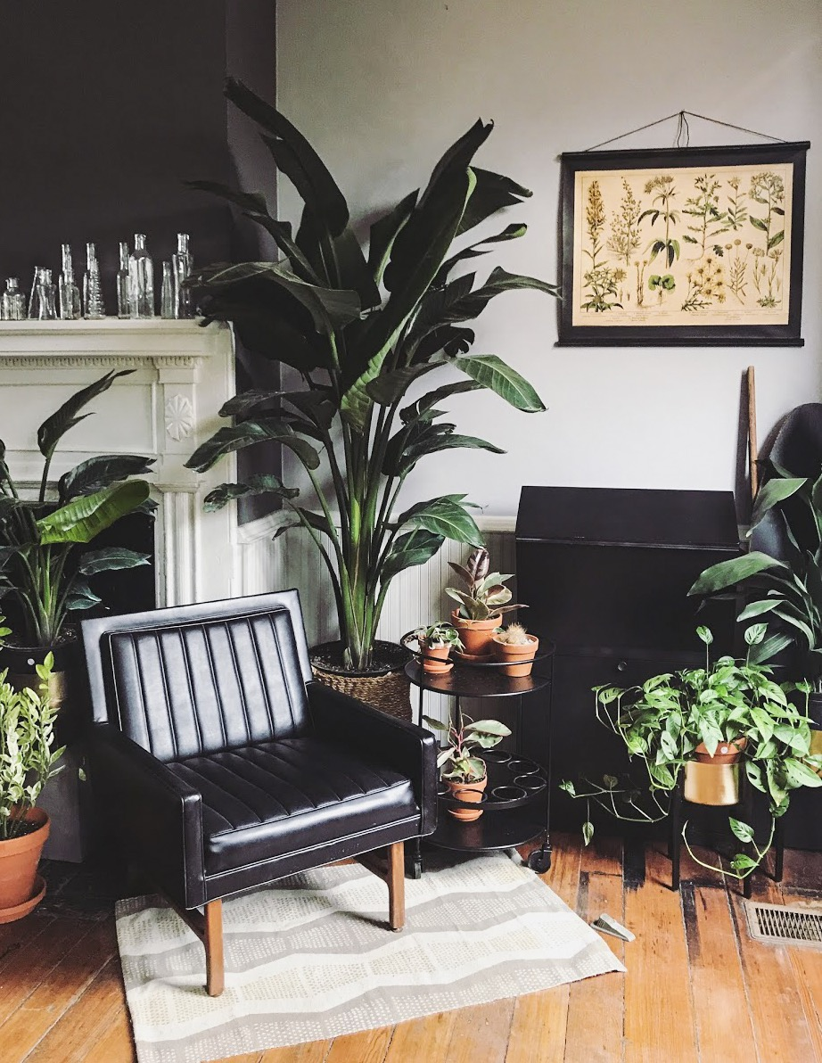 We love working with local artists like Flower Haus in Shepherdstown, West Virginia, to have homes full of flowers and plants.