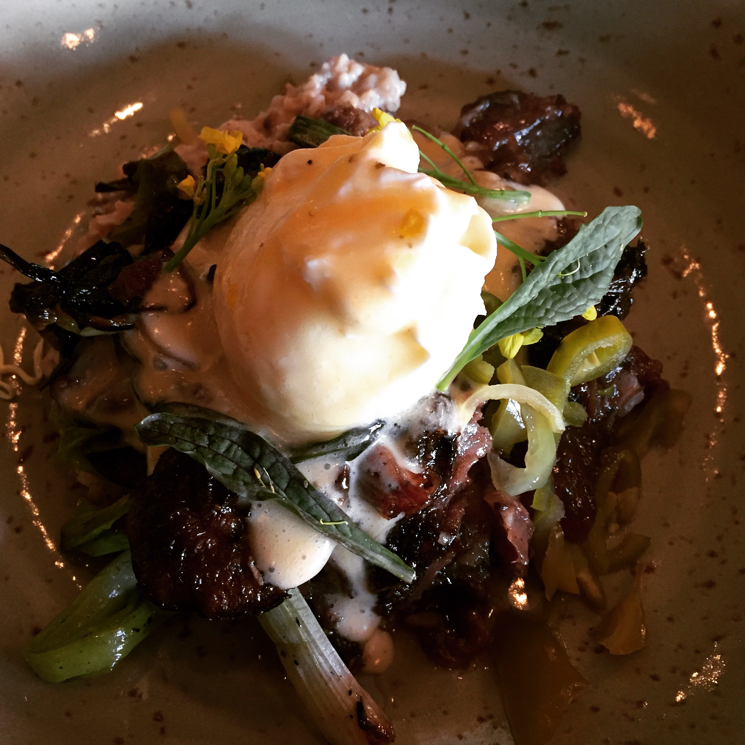 Beef cheek with oats and poached egg