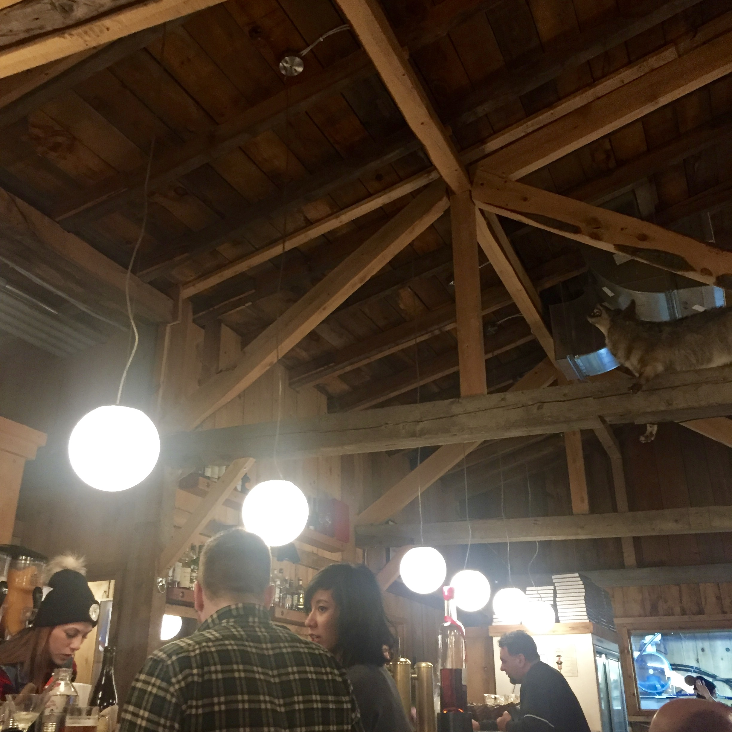 Inside the shack, taxidermy wolves and flannel clad wait staff included