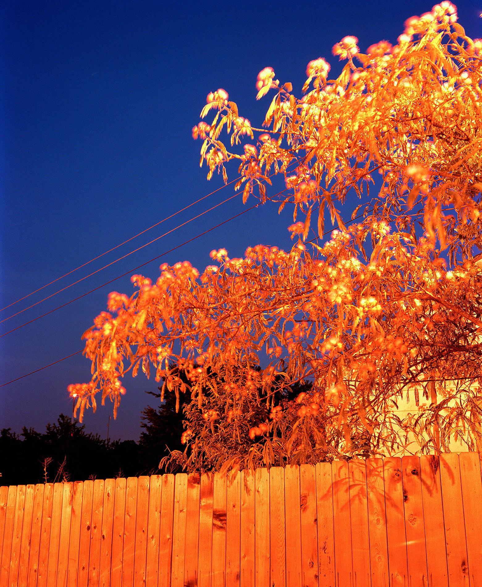 Twilight)5_23.jpg