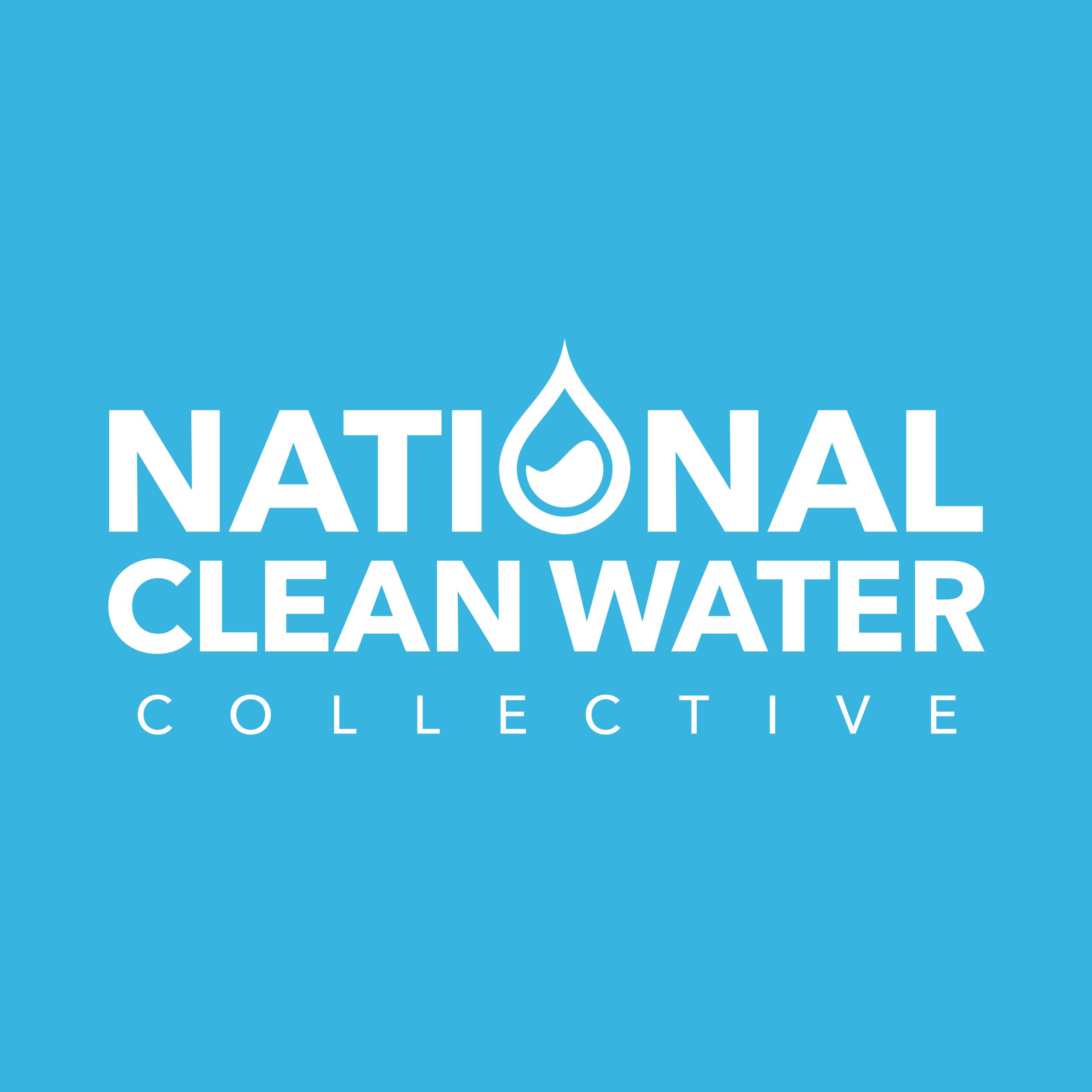 National Clean Water - Wordmark & Symbol Designnon-Profit Grassroots Organizationserving The Flint, Michigan Community