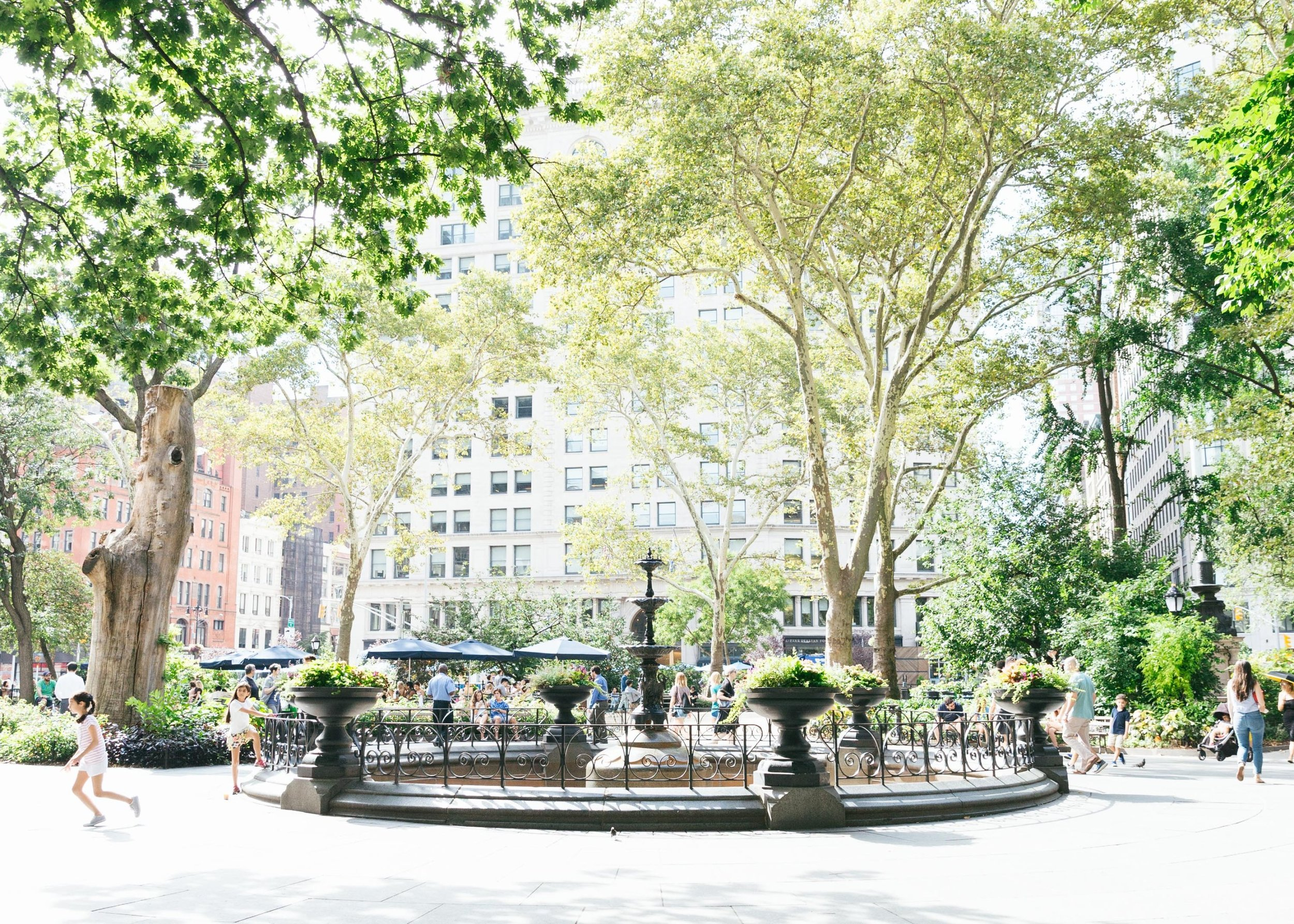 A quiet moment from Washington Square Park, NYC