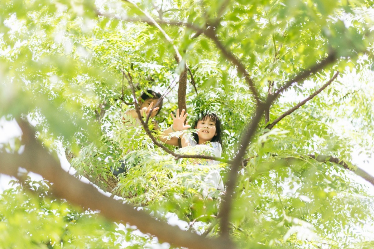 Students climbing trees during recess. School activities are designed to be closely integrated with nature.