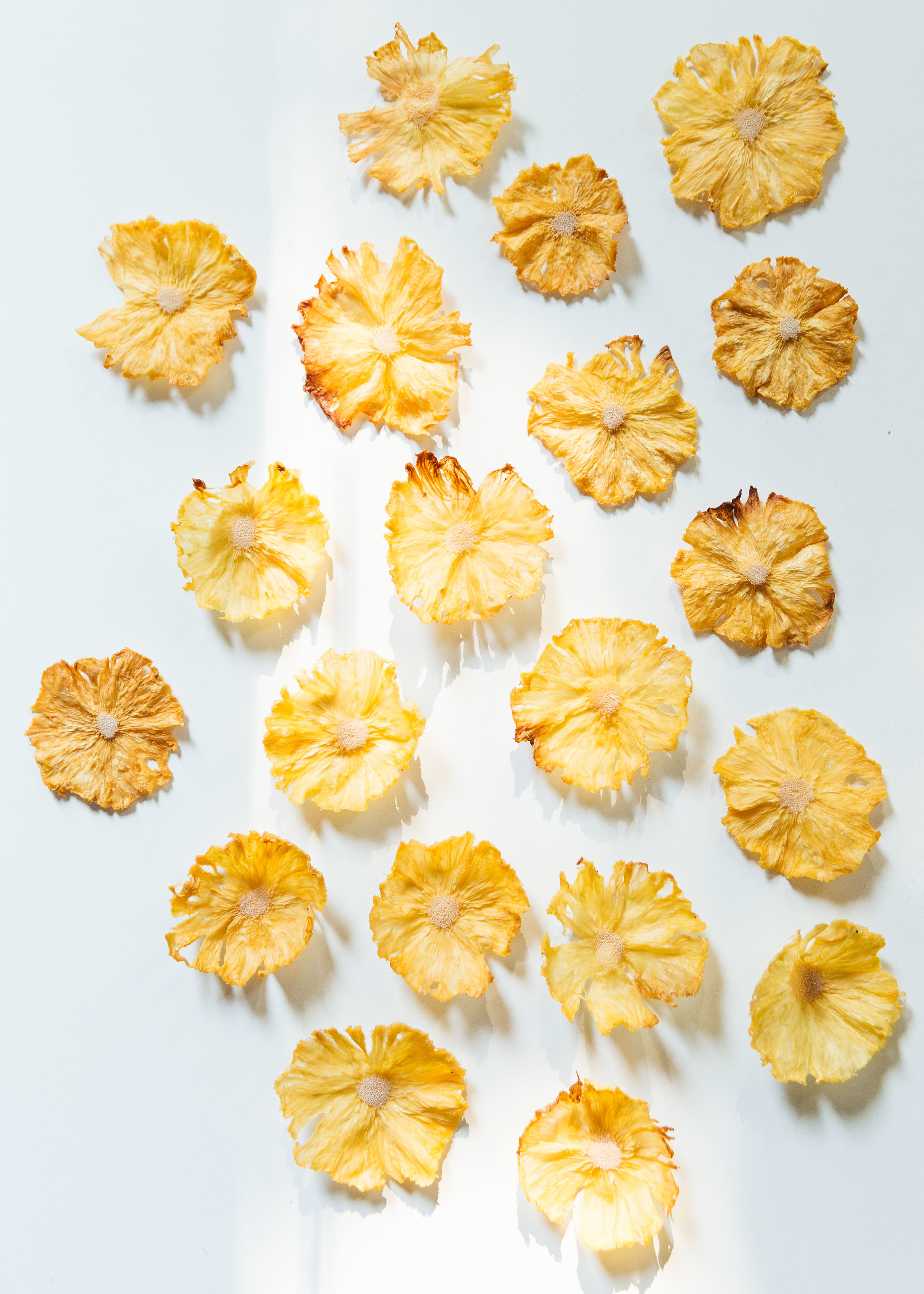 dried pineapple flowers in afternoon light