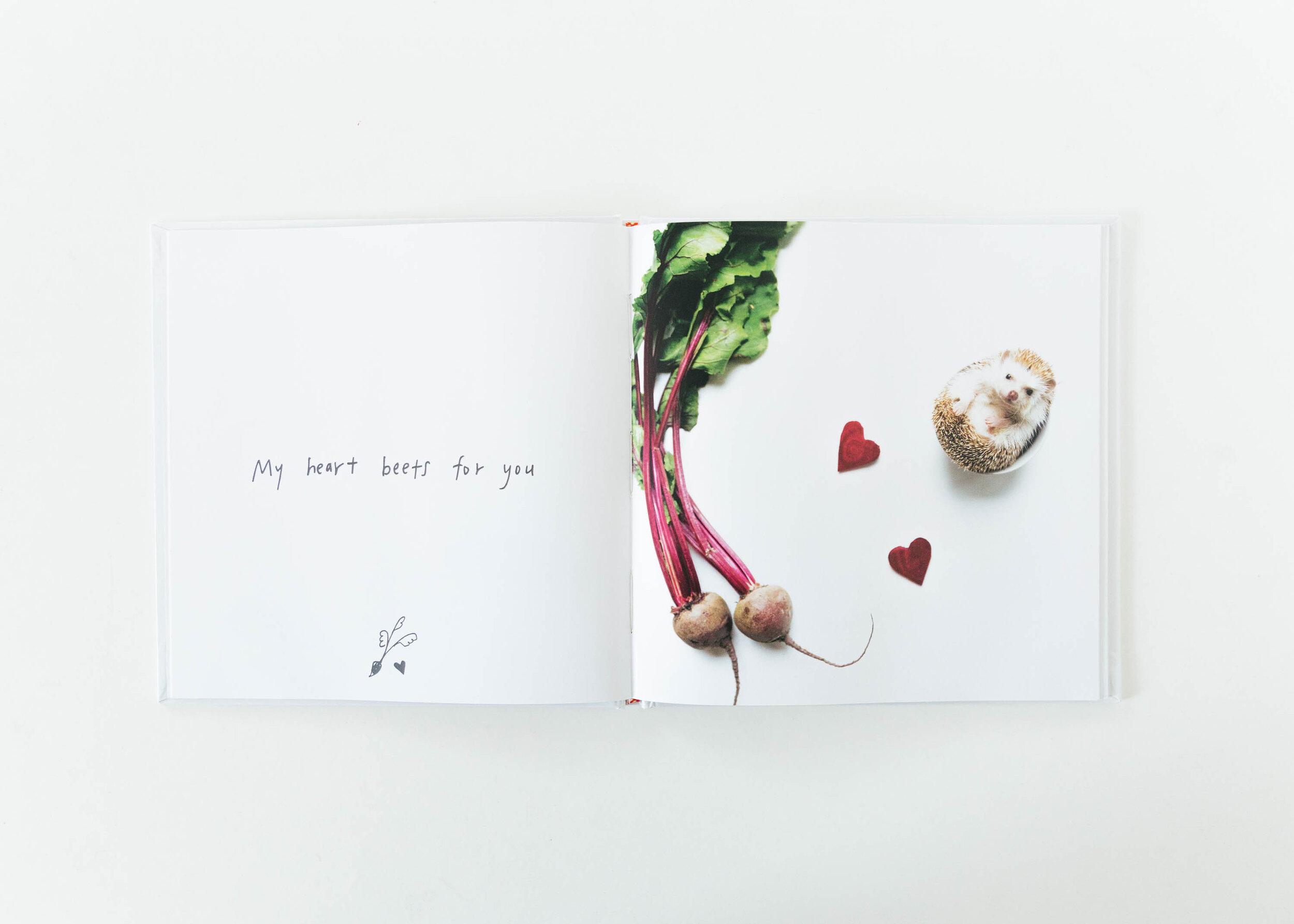 muji_amelia_hedgehog-book-3.jpg