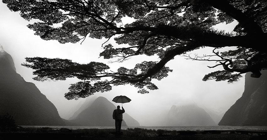 Milford-Umbrella--Ranken.jpg