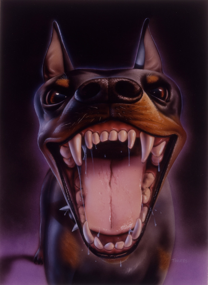 Doberman01_webcopy3.jpg