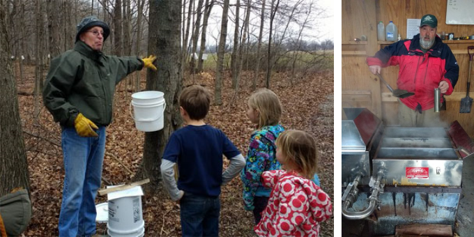 """Learning about the tapping process  Cooking syrup in the """"sugar shack"""""""