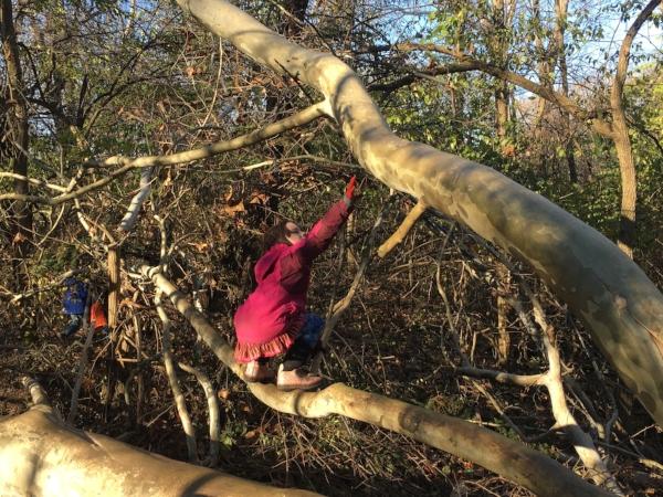 Squatting, Balancing, & Reaching! -