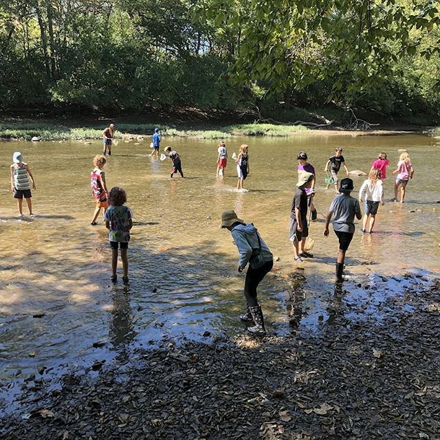 What a perfect day for creeking in the Olentangy! Students measured the temperature, ph, dissolved oxygen and turbidity and also used presence of macroinvertebrates to determine an above average health rating of the river. We were really excited to find a couple stoneflies that indicate good water quality! Tomorrow we will submit our results to an online database and continue to sample and compare throughout the year.