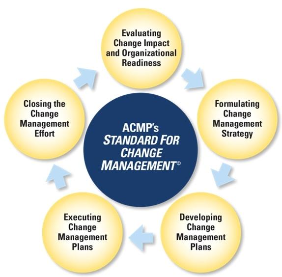 Standard for CM 5 Processes