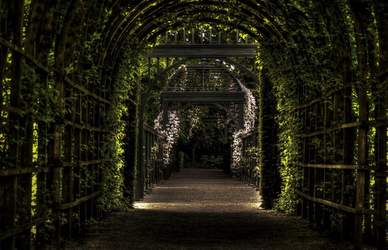garden-path-way-park.jpg