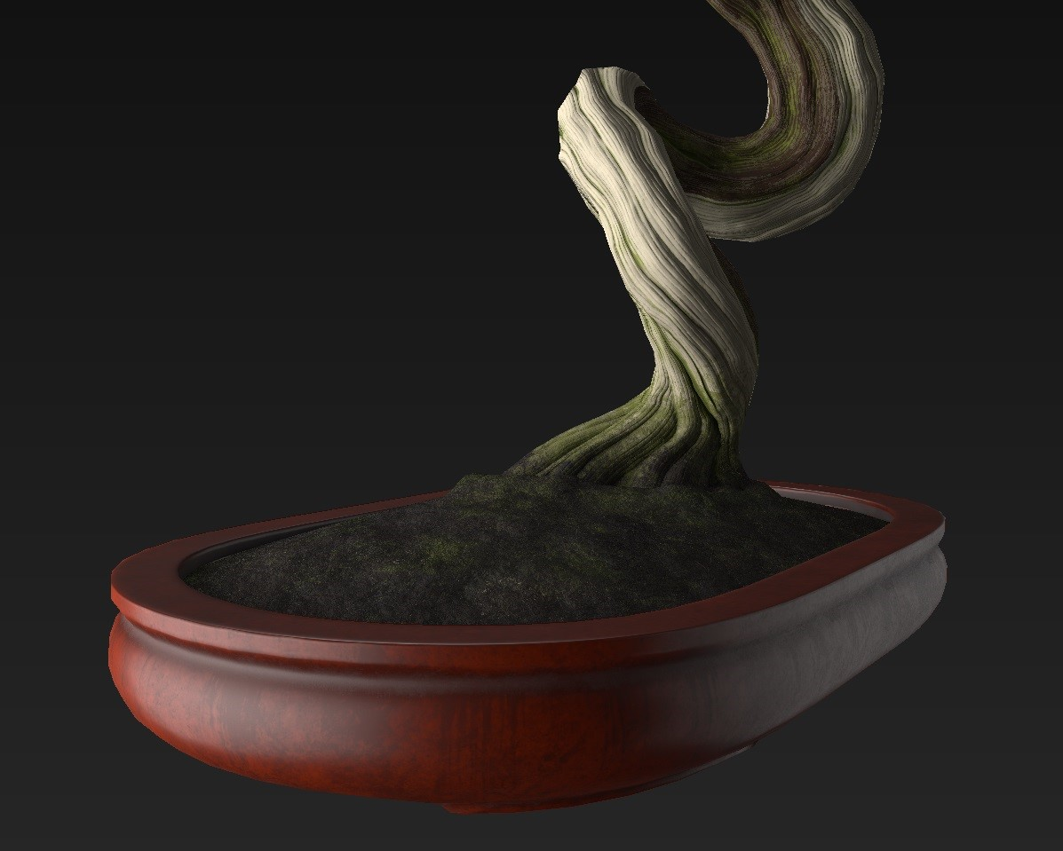 Bonsai_Tree_22.jpg