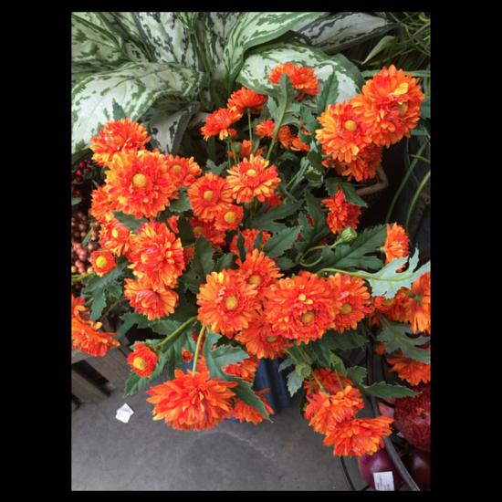Silk orange flowers