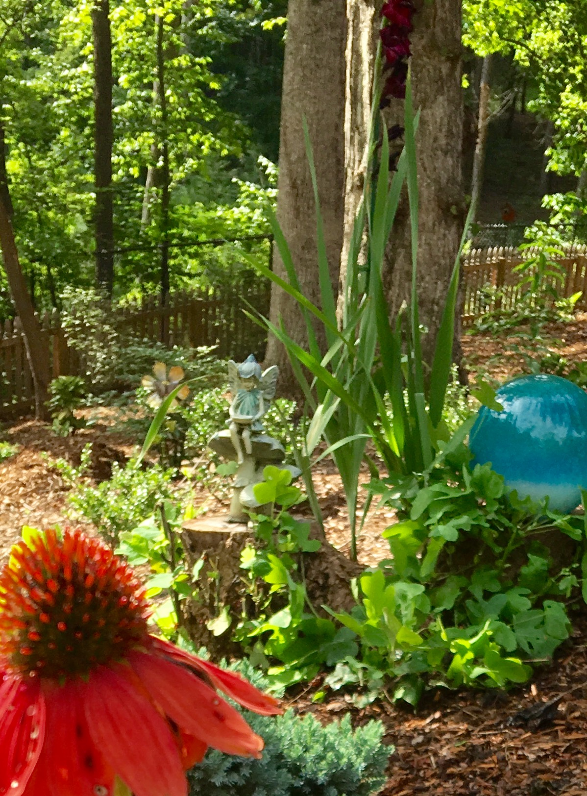 Art work factors into Becky's garden. The blue ceramic ball adds a colorful touch next to the 'Red Salsa' echinacea.