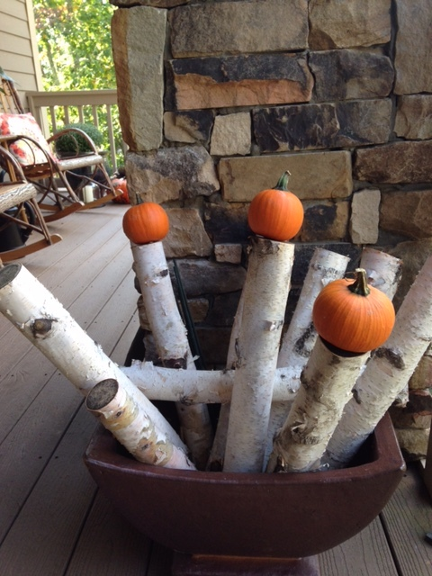 It isn't always about the plants. These birch branches with the pumpkins attached is easy, seasonal and adds color to the garden.