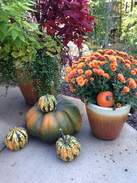Nancy adds seasonal containers to her garden, using pumpkins and mums to celebrate fall.