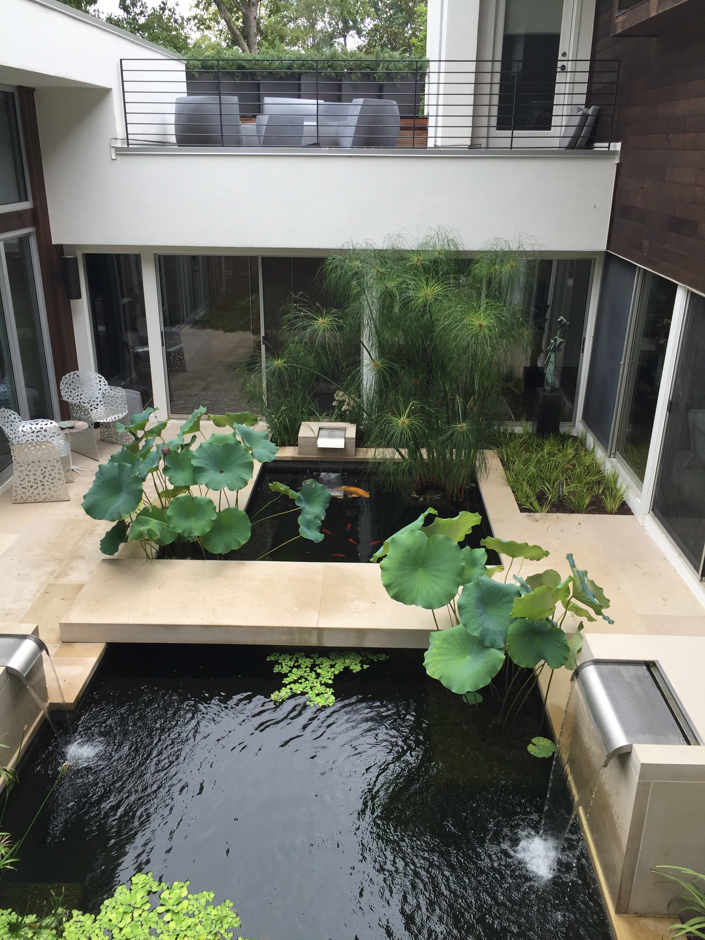 My favorite because I don't get to see many of these, the contemporary garden. Seamless transition between house and garden.