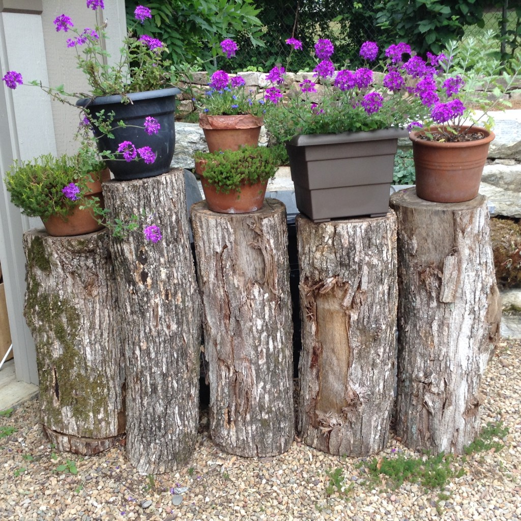 A good use for a tree that had to be removed from the property. Turn cut logs into a screen for hiding trash cans. Purple verbena is growing in containers placed on top the logs, and a trash can and recycle bin are behind it. This is so Pinterest worthy.
