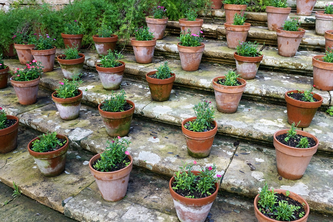 Getting creative with herbs is easy. It doesn't always have to be spiral herb gardens, sometimes it's as simple as potted herbs on your back steps.