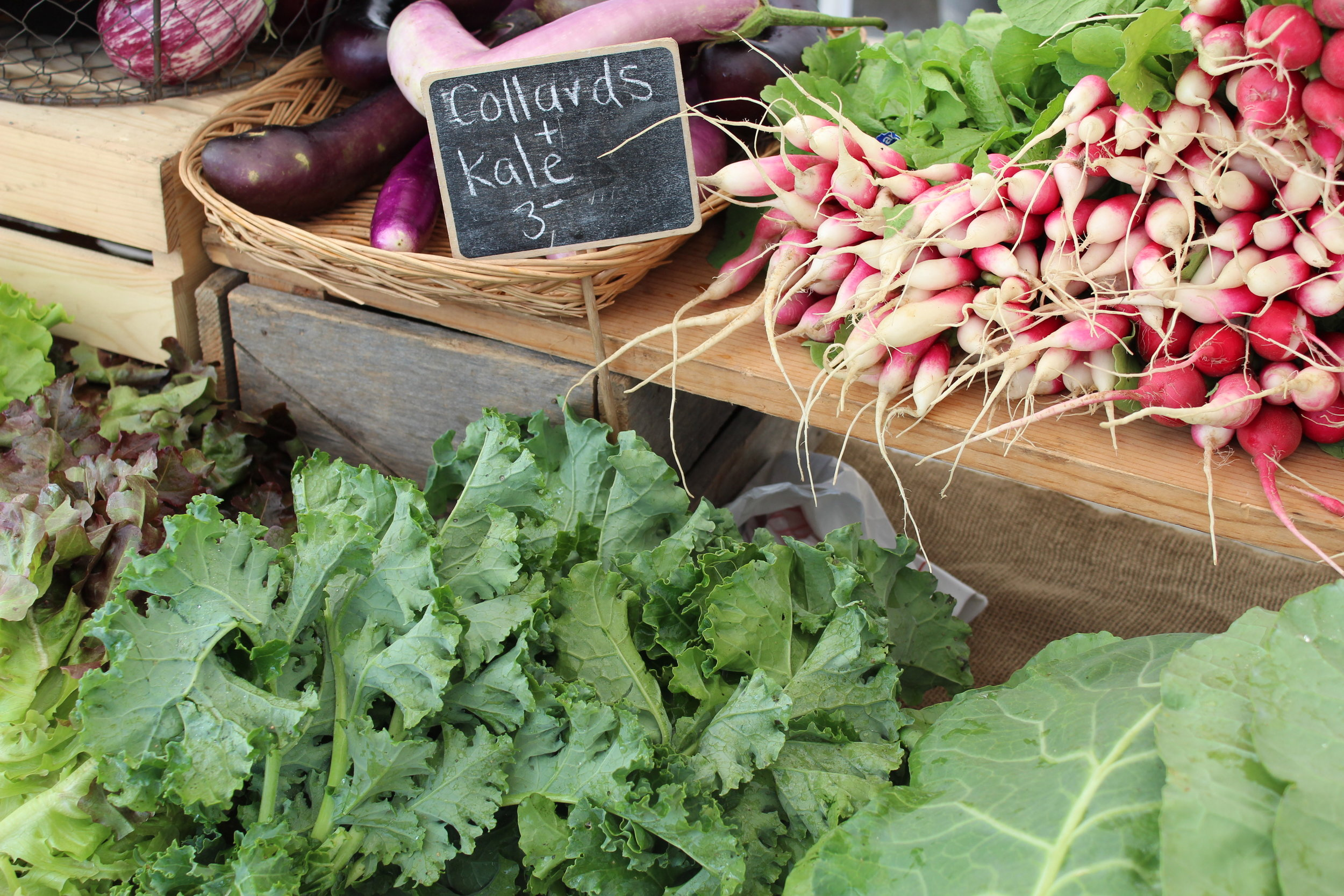 """Kale is harvested when the leaves are about the size of your hand. Use sharp scissors to trim, cutting from the outside of the plant. Pick a fistful of leaves each harvest. Kale can handle temperatures in the 20s, so this is one you can harvest for awhile.  Harvest collards when the leaves are 10"""" long, dark green and young. Again use sharp scissors to trim. As you trim the plant will start to look like a small tree, but new leaves will continue to emerge from the center of the plant."""
