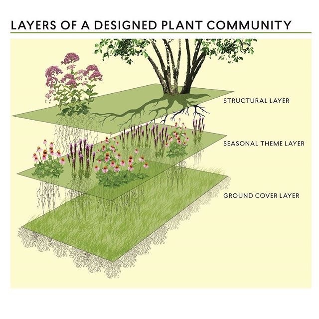 Picture #3: Rainer's schematic of a naturalistic planting community. Layer 2 (seasonal theme layer) grows up through layer 1 (groundcover layer) and layer 3 (structural layer) grows up through layers 1 and 2. A layered, tiered planting that is an ecological plant community. (Photo credit: Thomas Rainer)
