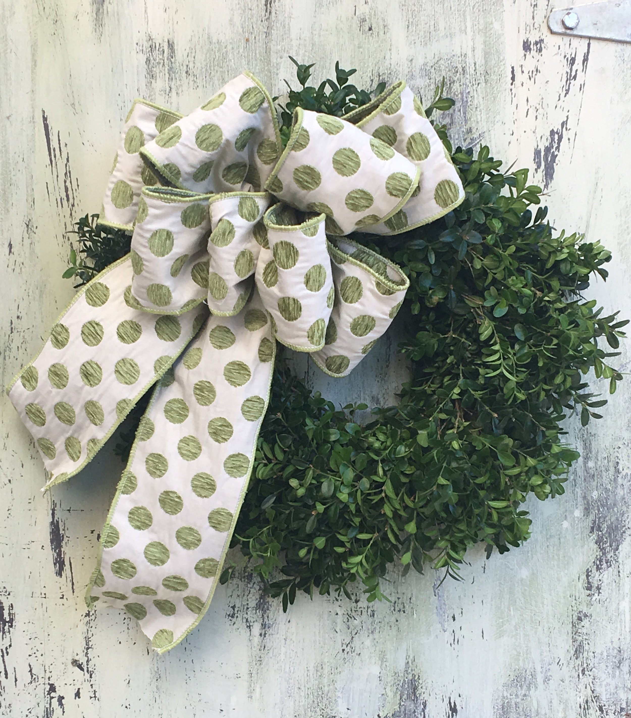 Whimsical polka dot ribbon on boxwood wreath.
