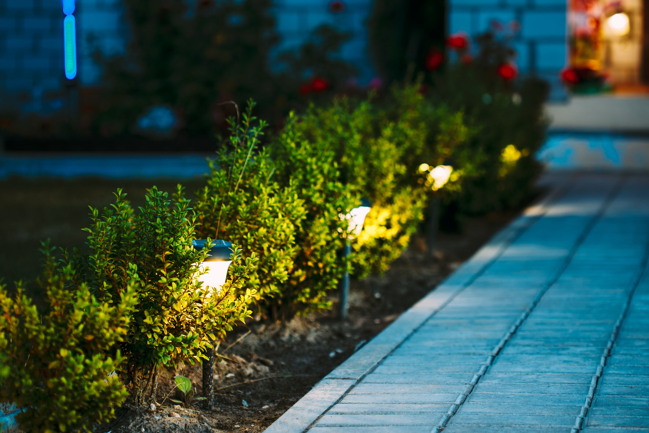 Lighting is a safety and aesthetic addition to your landscape.