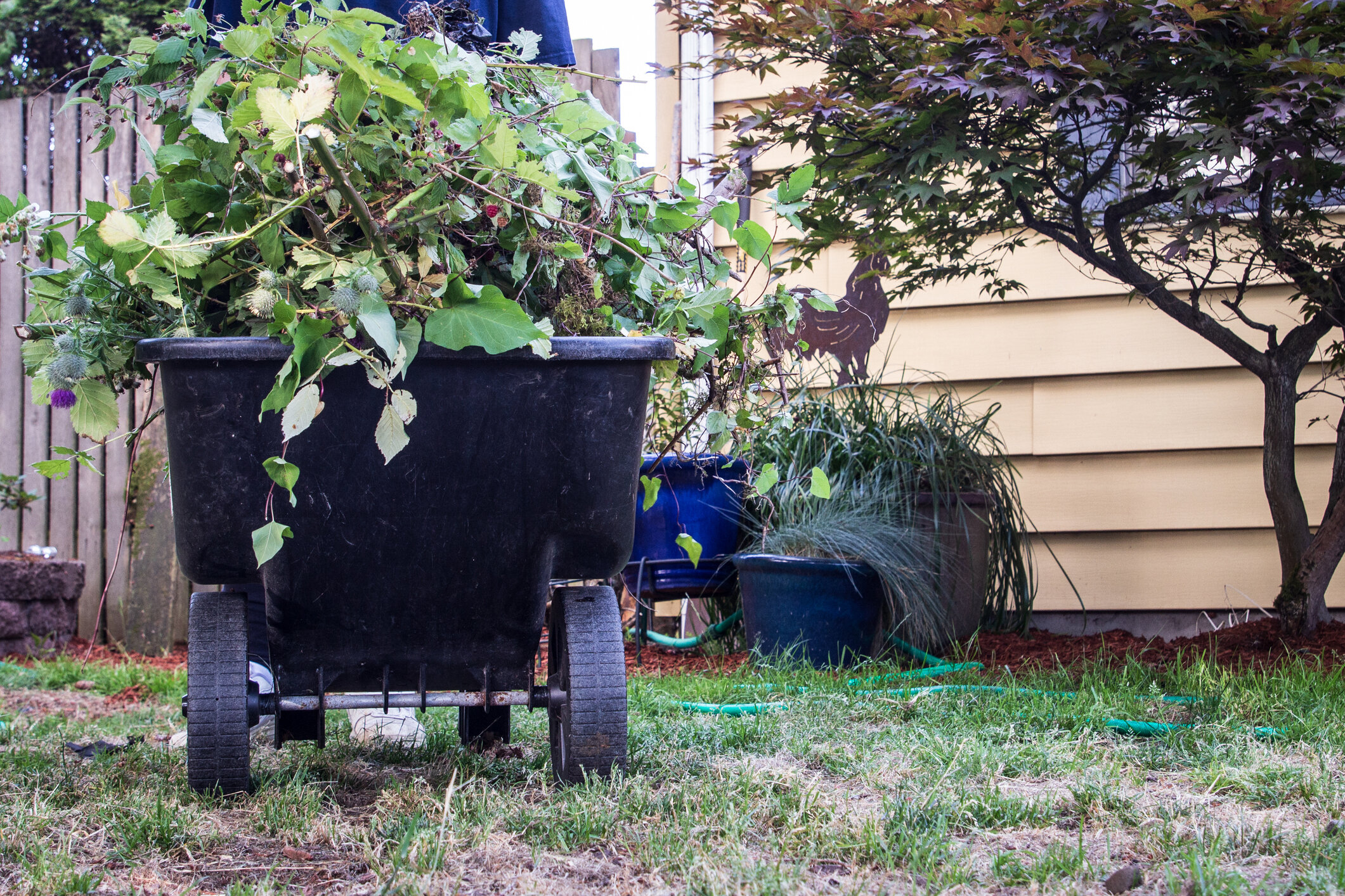 Be sure to clean up unsightly weeds, rake up and reseed grass where necessary, and prune trees and shrubs.