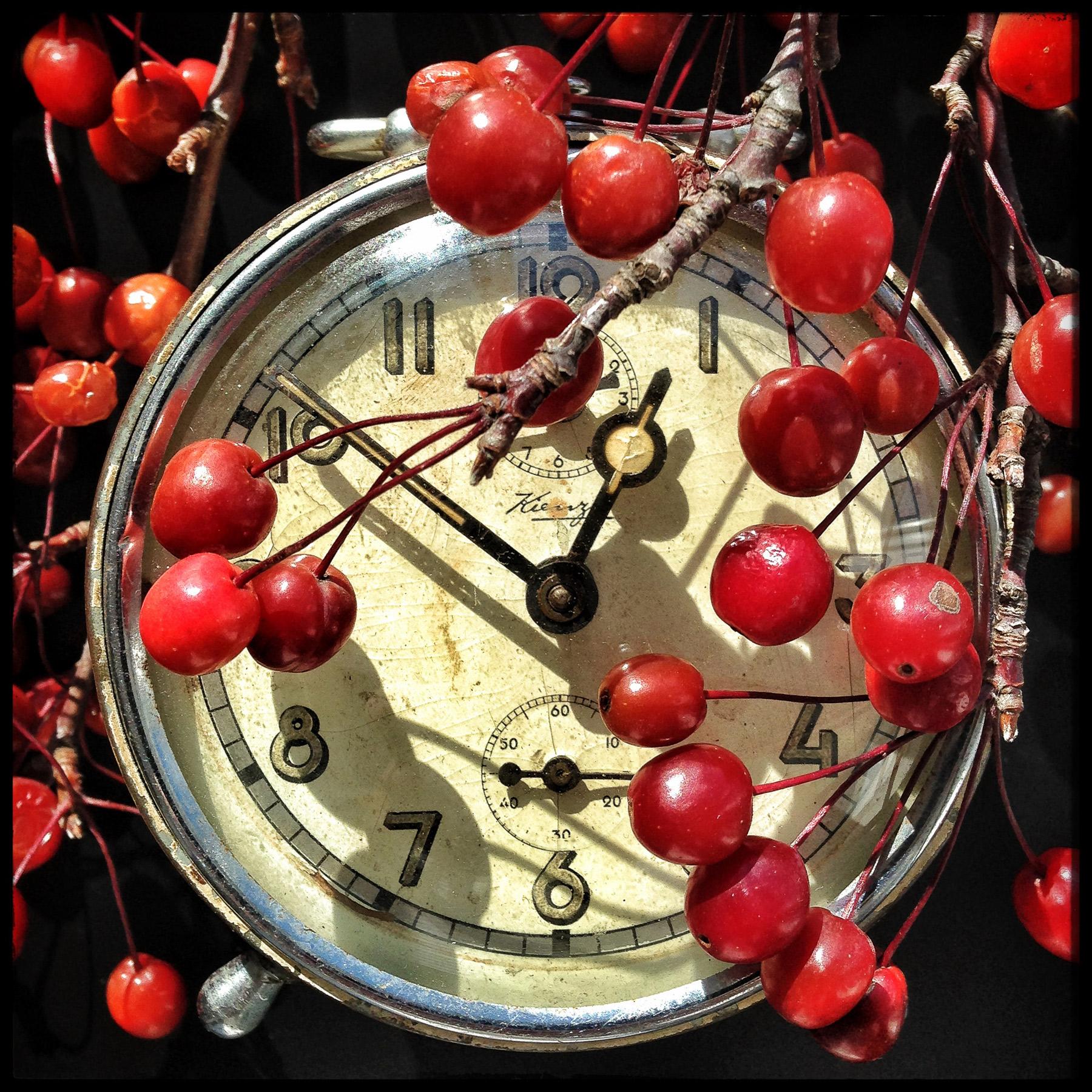 Red-Berry-Alarm.jpg