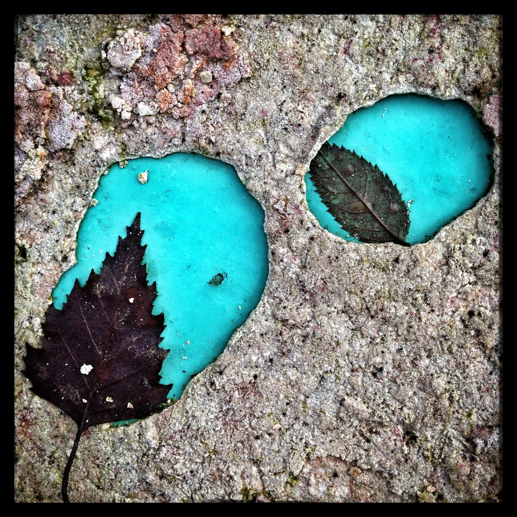 Leaves-in-Paint.jpg