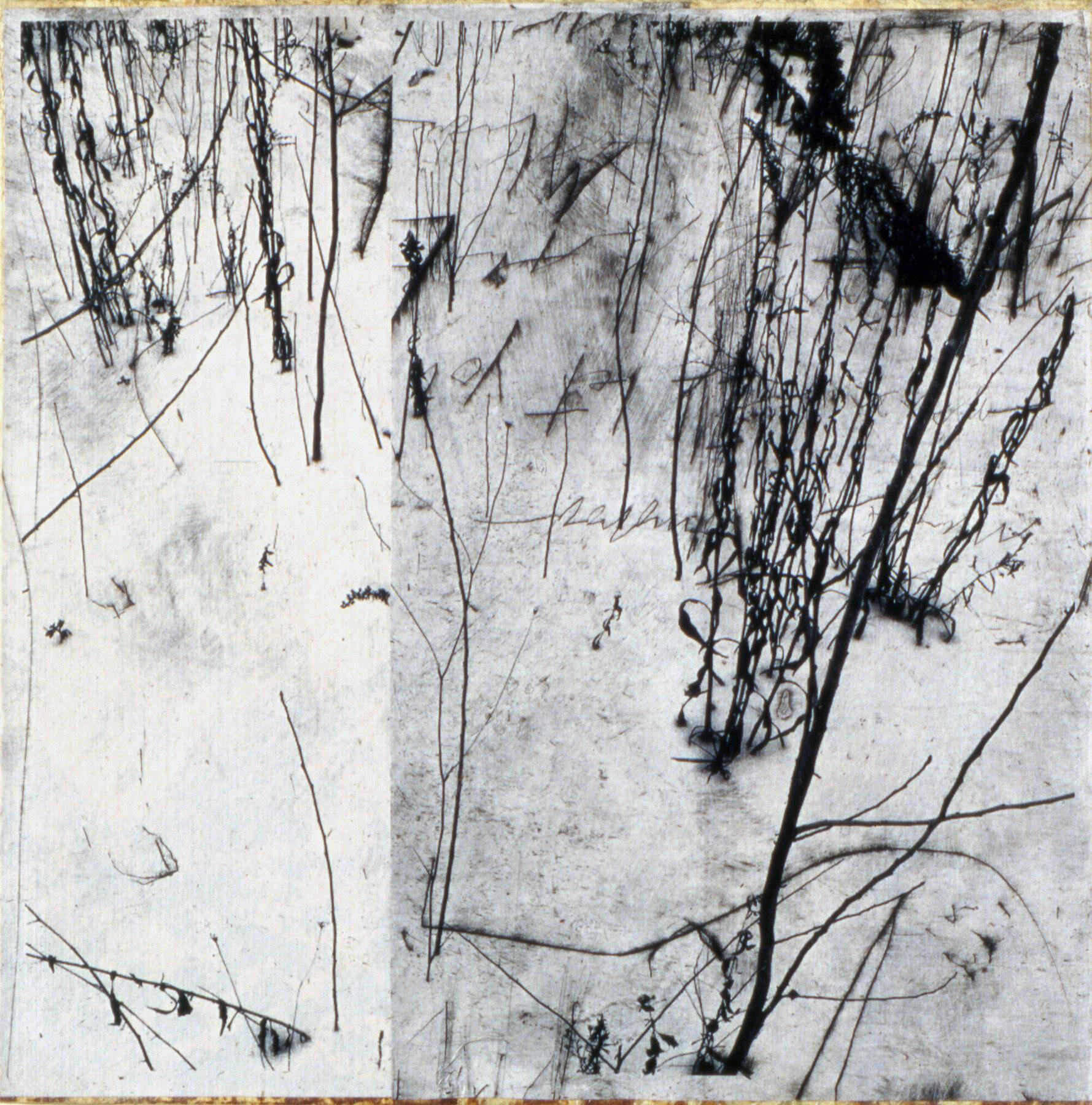 Gary-Weidner---Flowers-1.jpg