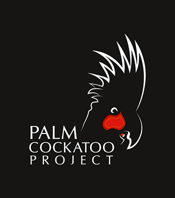 Palm Cockatoo Project