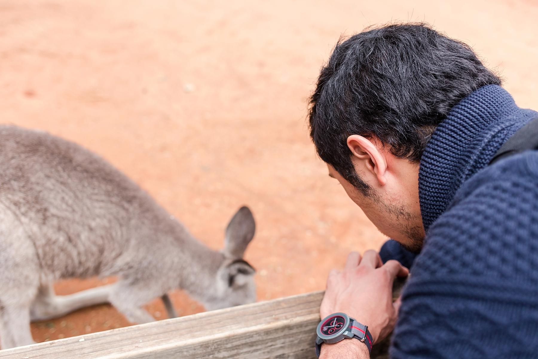 featherdale-wildlife-park-australia_0153.jpg