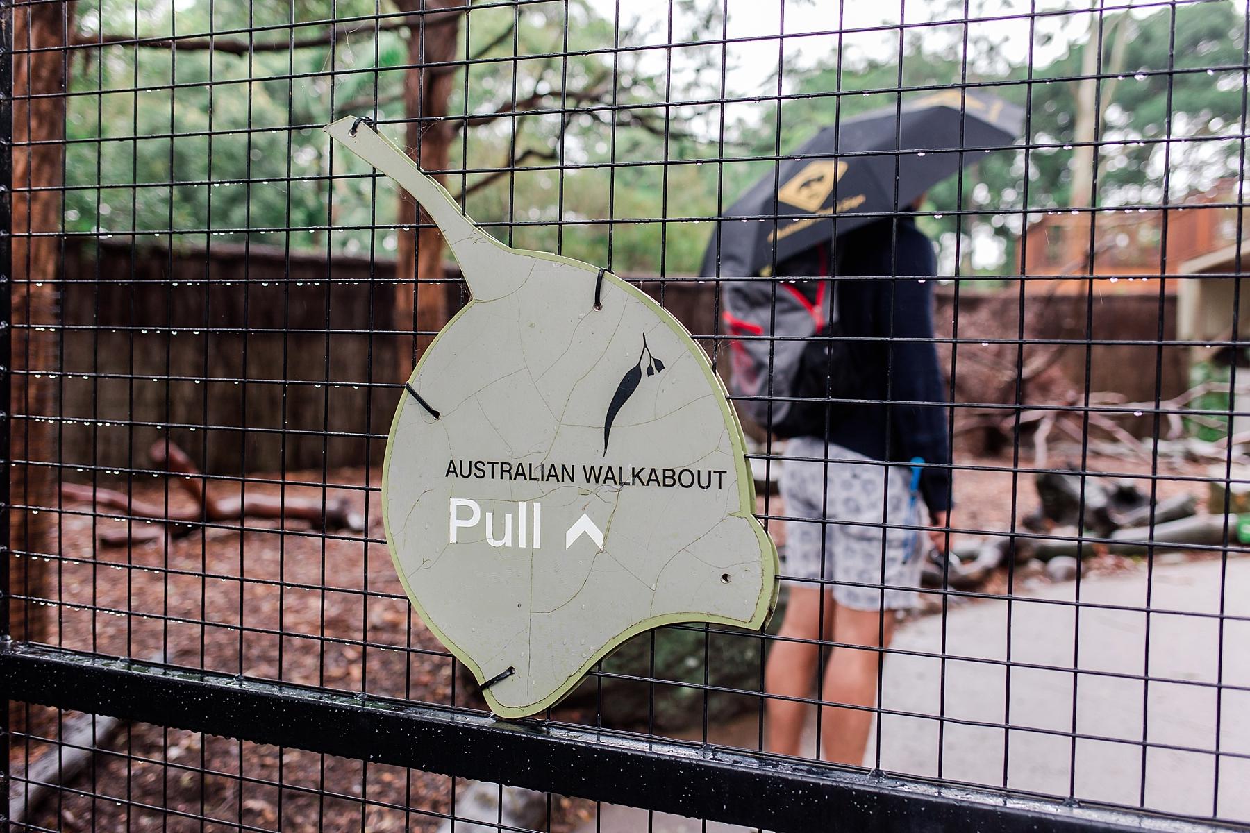 taronga-zoo-sydney-australia_0161.jpg