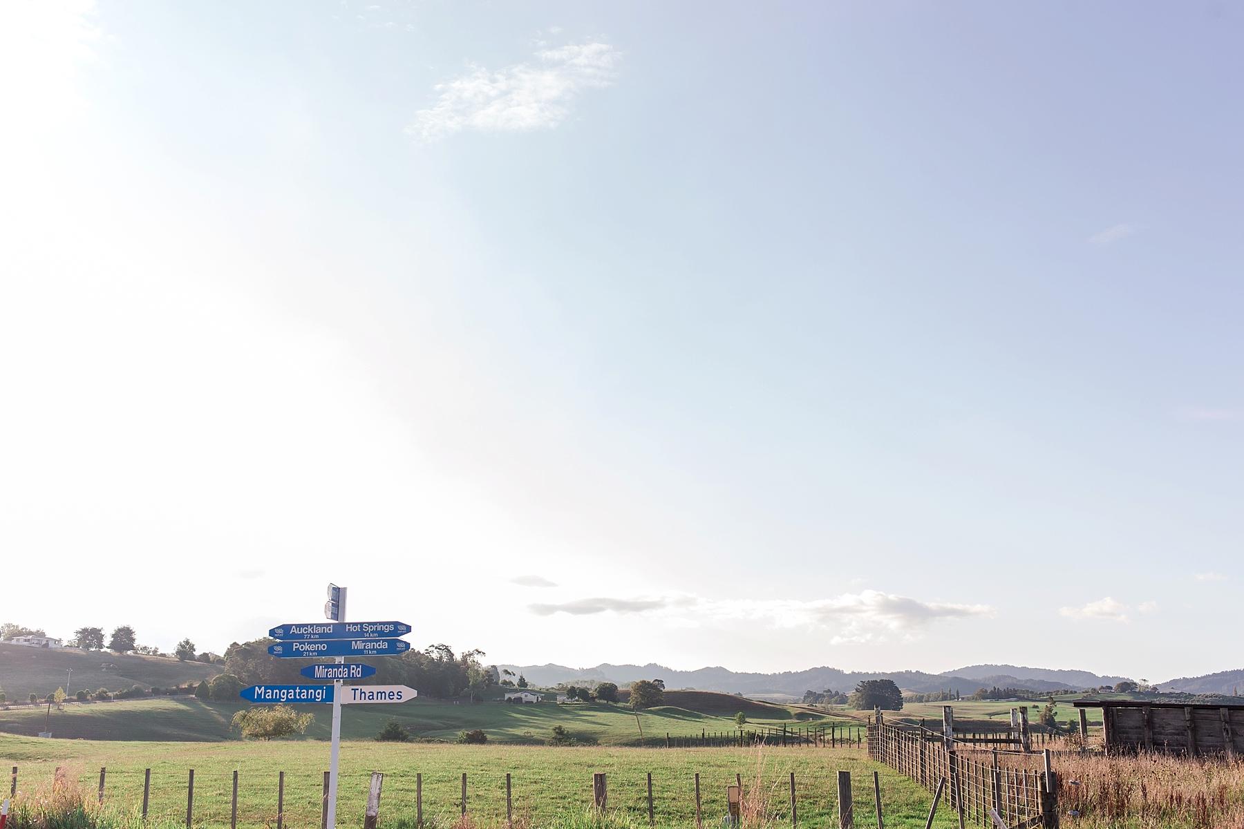 north-island-waikato-new-zealand-scenery_0195.jpg