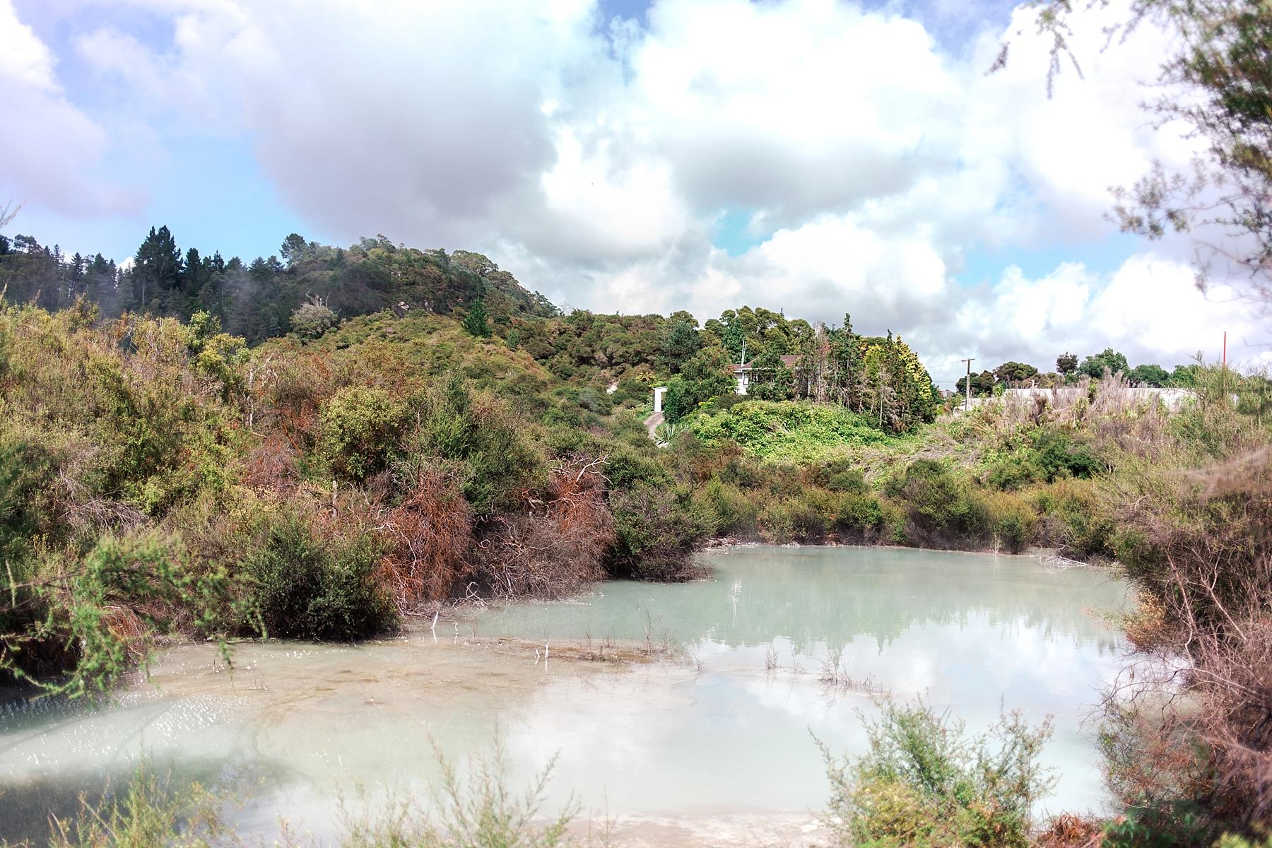 north-island-rotorua-new-zealand-scenery_0204.jpg